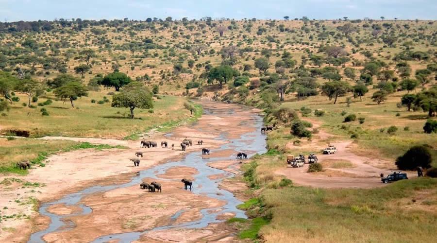 2-Days 1-Night Tarangire Ngorongoro Crater