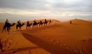Chalbi Desert Safari-8 Days Lake Turkana Camping