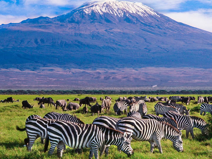 3-Days Tsavo East & Amboseli