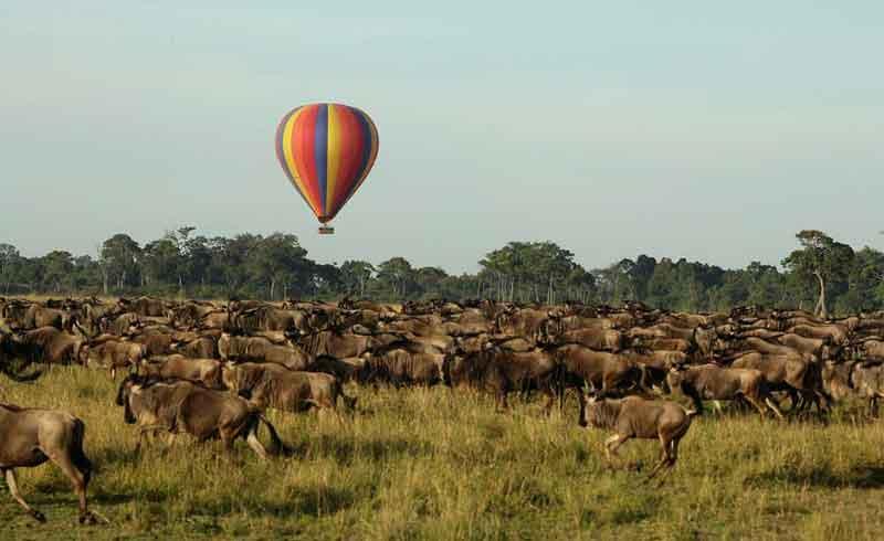 Air Safari Packages