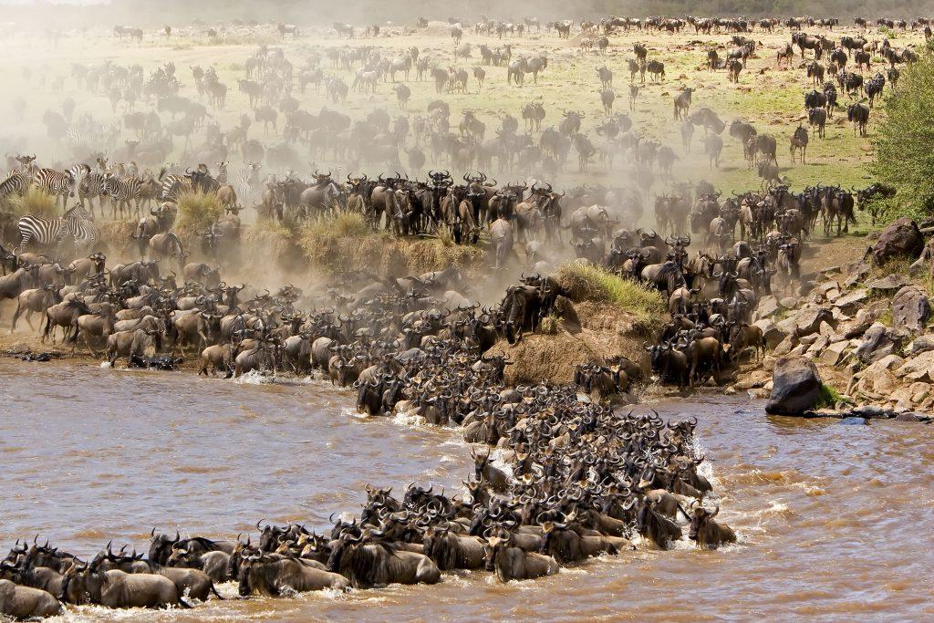 jeep safaris from Nairobi