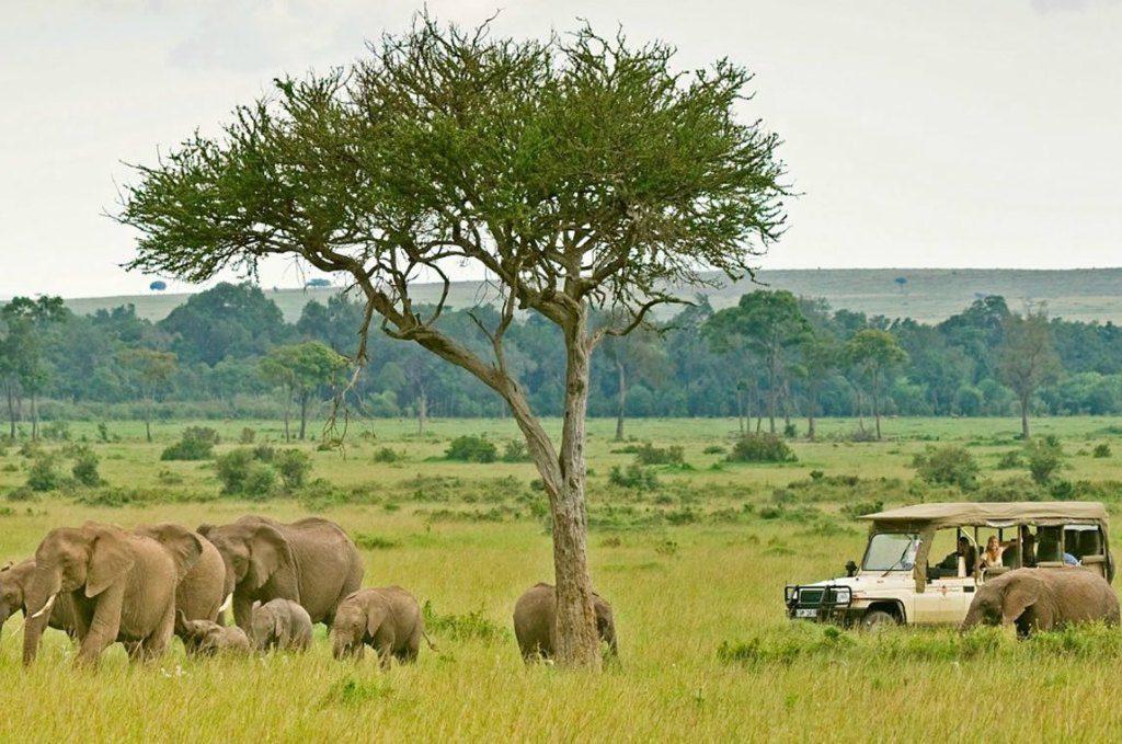 10-Days Kenya Tanzania Safari