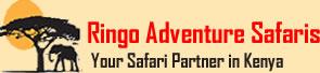 Ringo Safaris