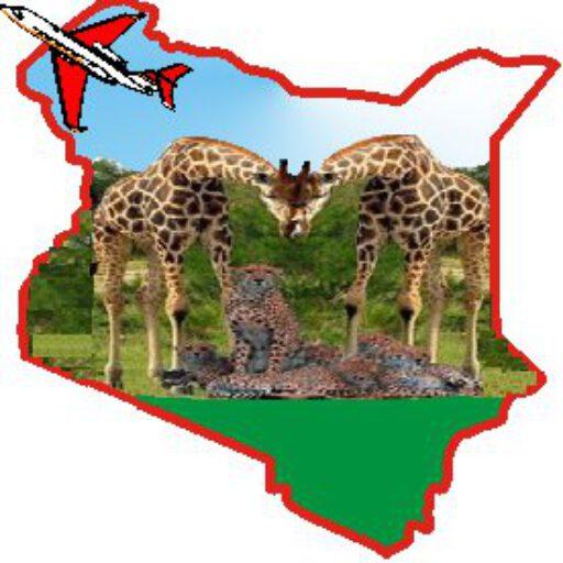 Ringo Safaris Logo
