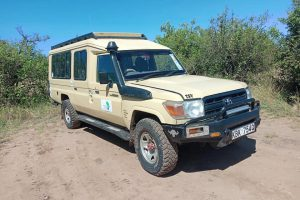 Kenya jeep safaris