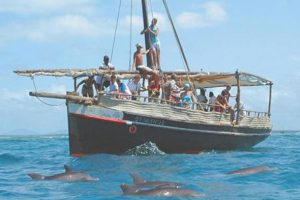Wasini dolphin trip